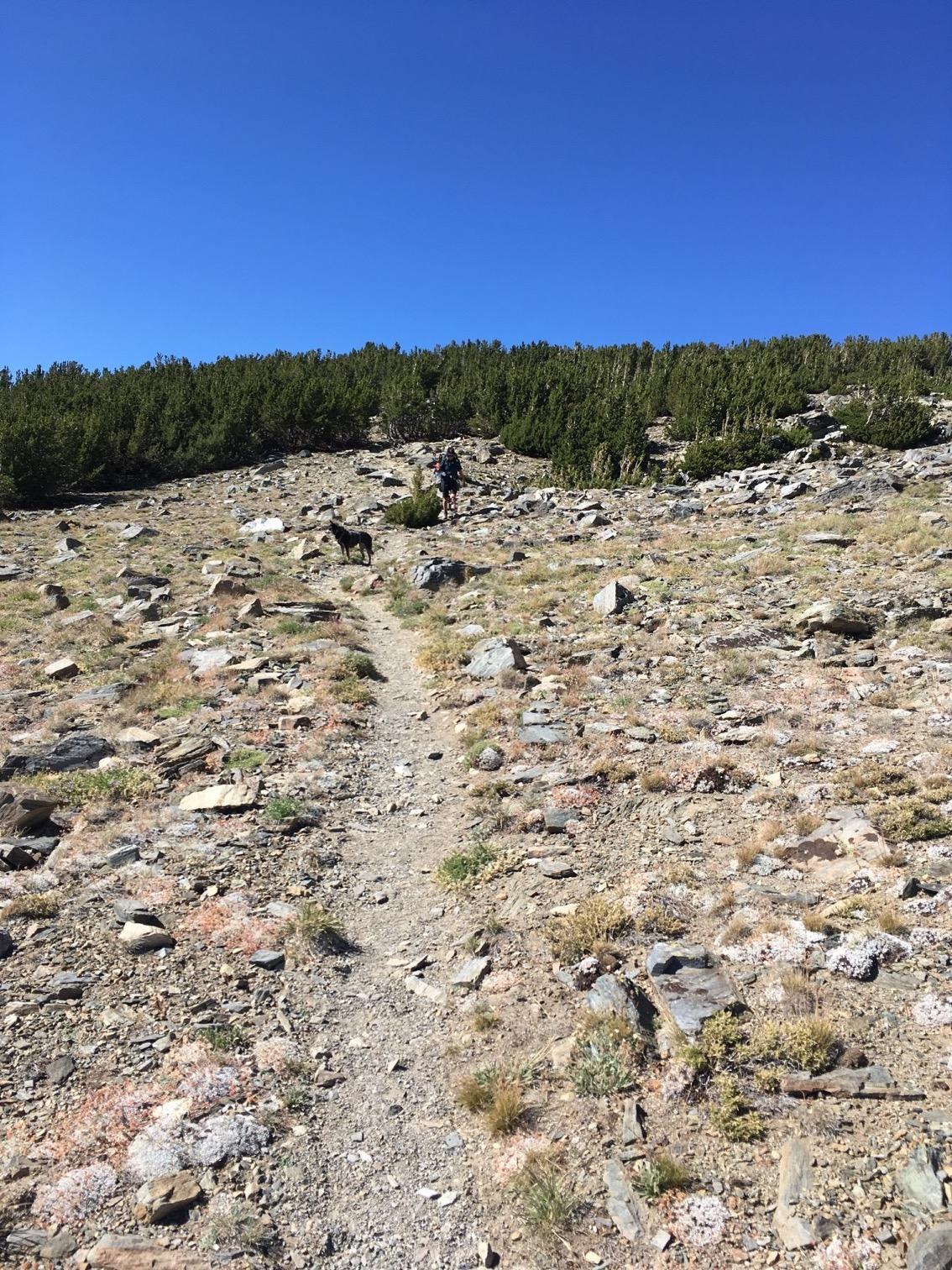 Connecting to Rim Trail